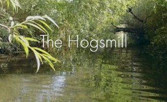 Vote for Hogsmill River film
