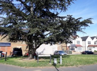 Residents object to phone mast on village green