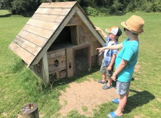 Treasure trail in place of fair