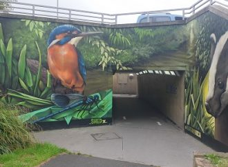Wildlife mural transforms Tolworth roundabout