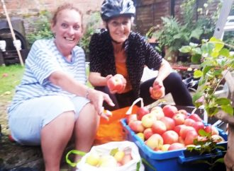 Waste not, want not – Abundance will harvest your unwanted fruit