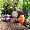Free seeds for a painted pebble