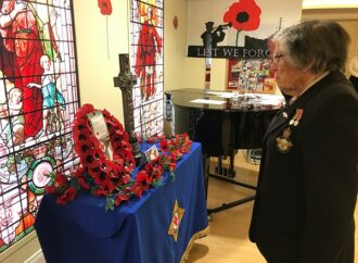 Veterans mark Armistice Day with services at care home