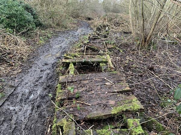 New boardwalk to help restore biodiversity at Six Acre Meadow