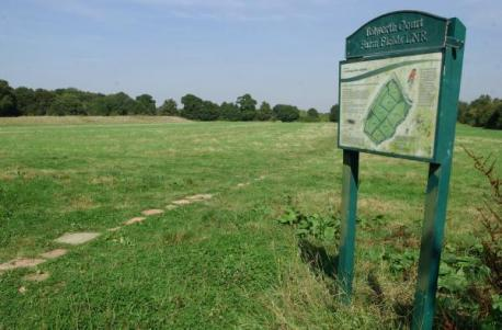 Tell community survey what you think of your local green space