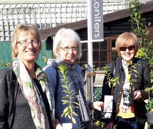 Gardening club grows new shoots