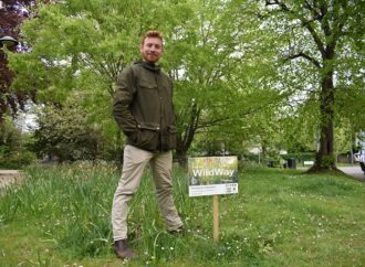 Find out more about plan to turn verges into wildflower meadows
