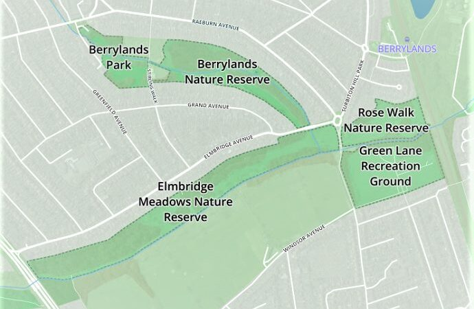 Share your views on Berrylands' green spaces in online survey