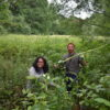 Mayor bashes balsam and opens boardwalk at Six Acre Meadow