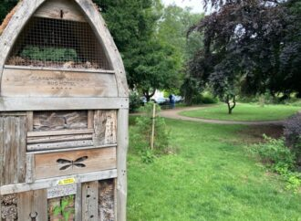 Join Friends group and survey to improve Claremont Gardens